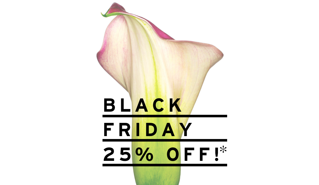 Black Friday 2019 – 25% Off Apothekari Skincare!