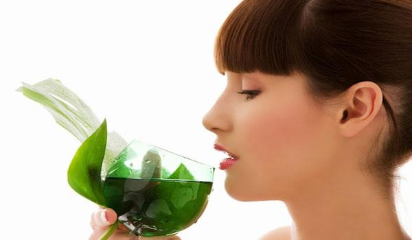 Green Tea and Skin: What You Need to Know