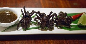Deep Fried Tarantulas