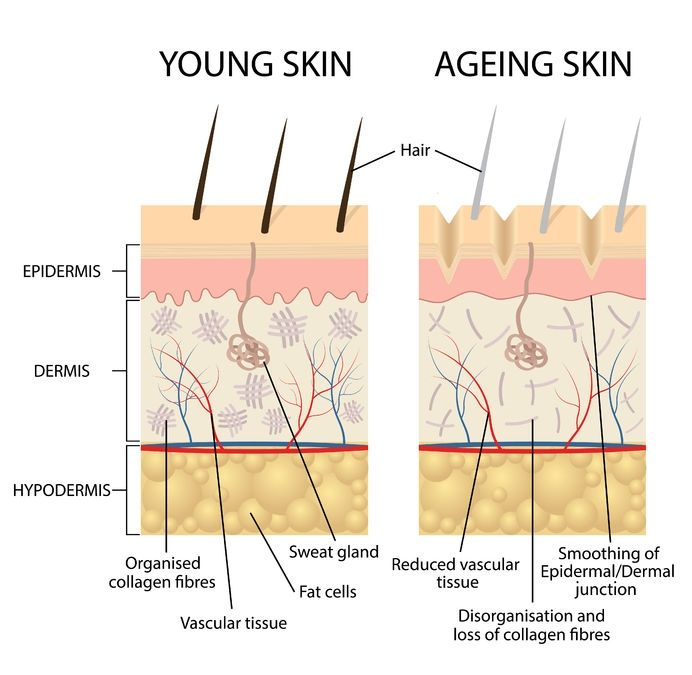 Aging Skin: 7 Things That Can Happen